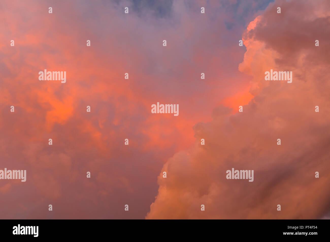 Reddish sumnmer storm clouds over southwest Florida United States - Stock Image