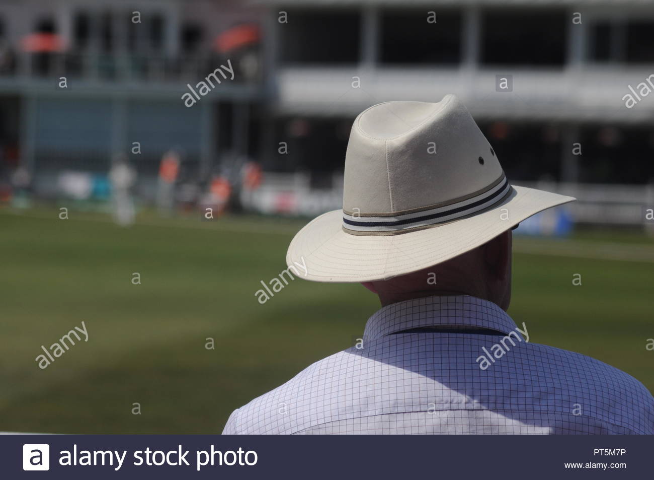 fee1ecf9 Man in hat watching a cricket match in summer Stock Photo: 221401818 ...