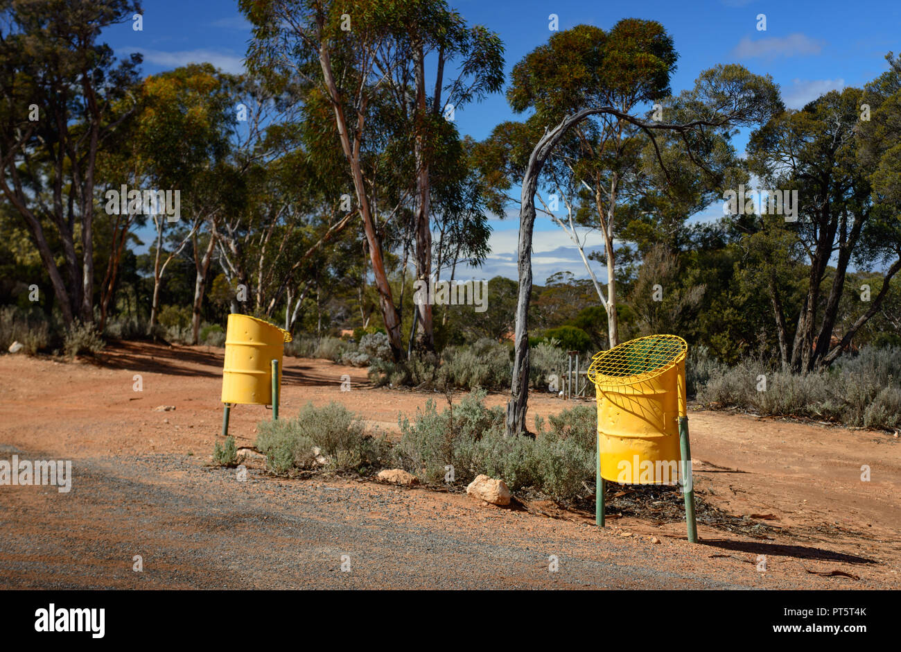 Yelow trash cans at a parking area in an eucalyptus forest, Western Australia, Australia - Stock Image