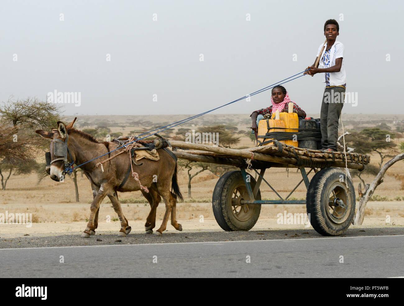 ETHIOPIA , oromia, donkey wagon on the road / AETHIOPIEN, Oromia, Eselskarren - Stock Image