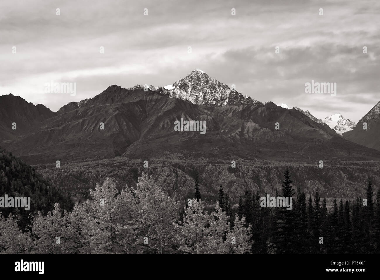 Snow lined mountain peak from Denali Highway in black and white - Stock Image
