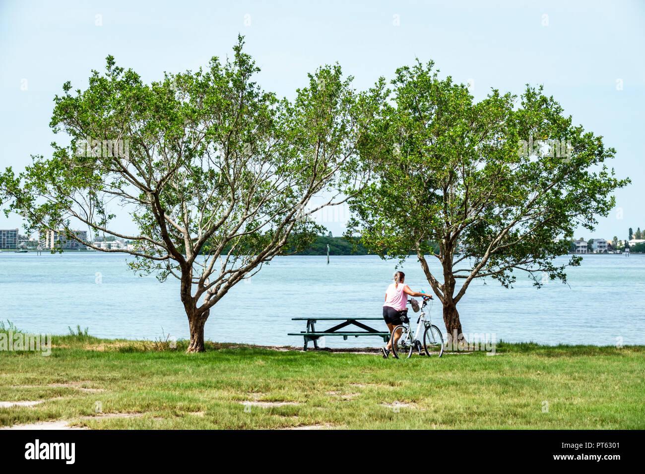 St. Saint Petersburg Florida Bay Pines War Veterans Memorial Park Boca Ciega Bay picnic table woman bicycle - Stock Image