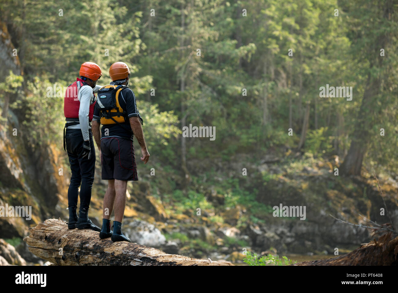 River runners standing on a log scouting a rapid on Idaho's Selway River. - Stock Image