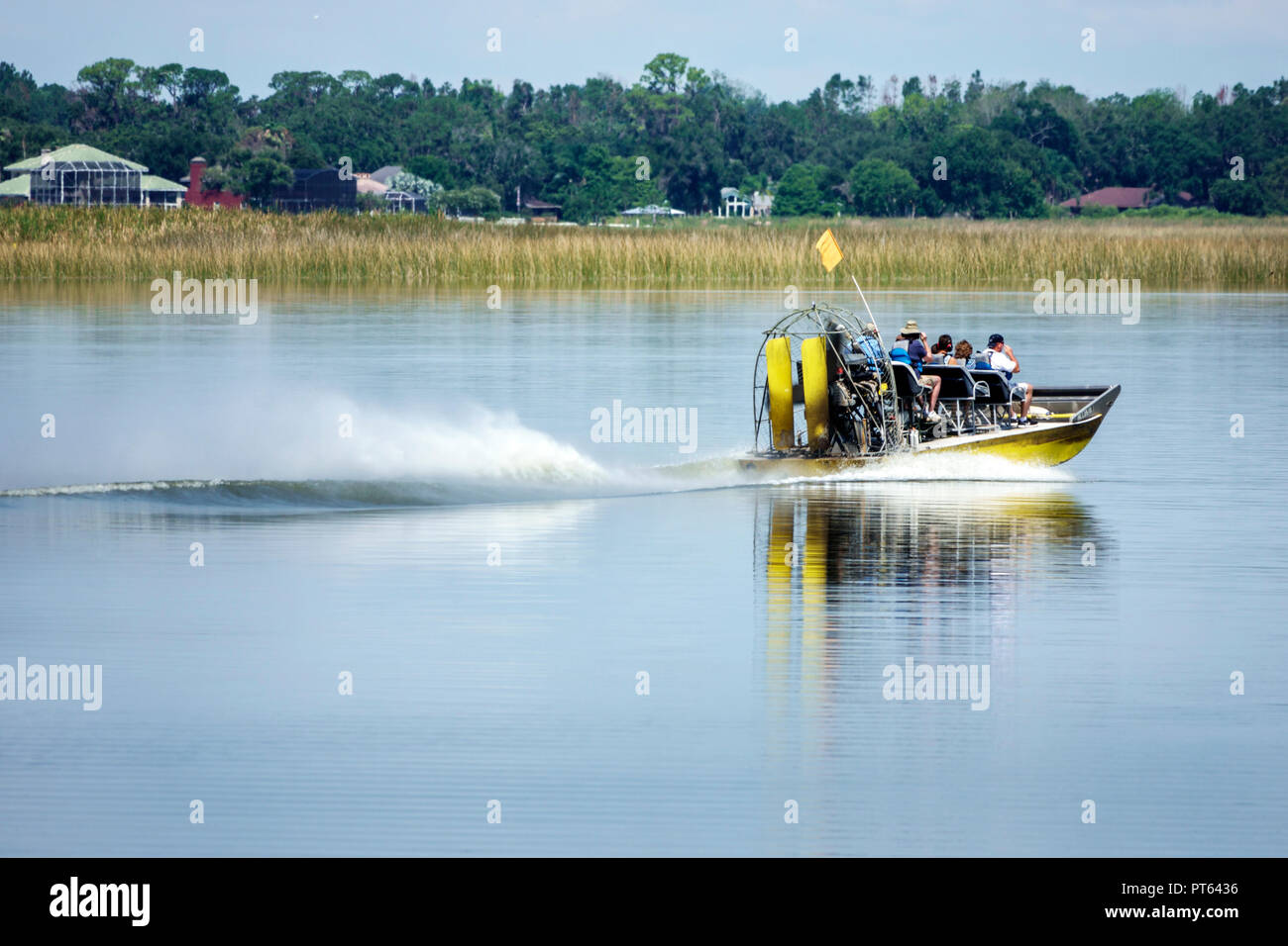 Florida Lake Hamilton water sawgrass boat airboat ride - Stock Image