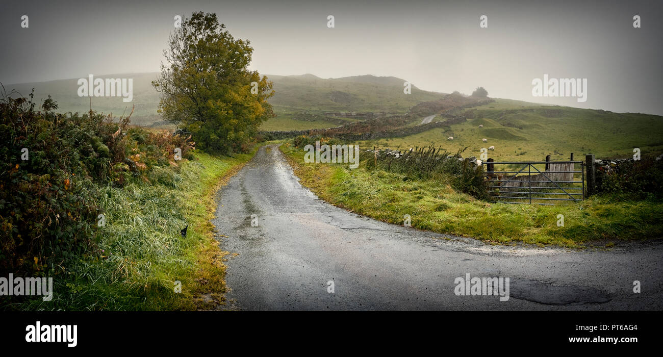 A wet day up on Osmotherly Moor with the Kirkby Slate Road dissapearing into the mist, murk and rain of Kirkby Moor. - Stock Image