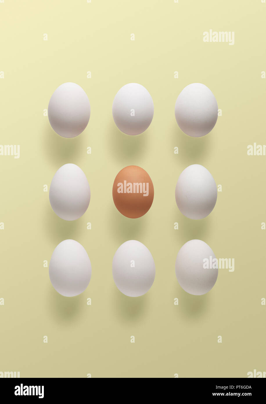 Concept a brown egg surrounded by white - Stock Image