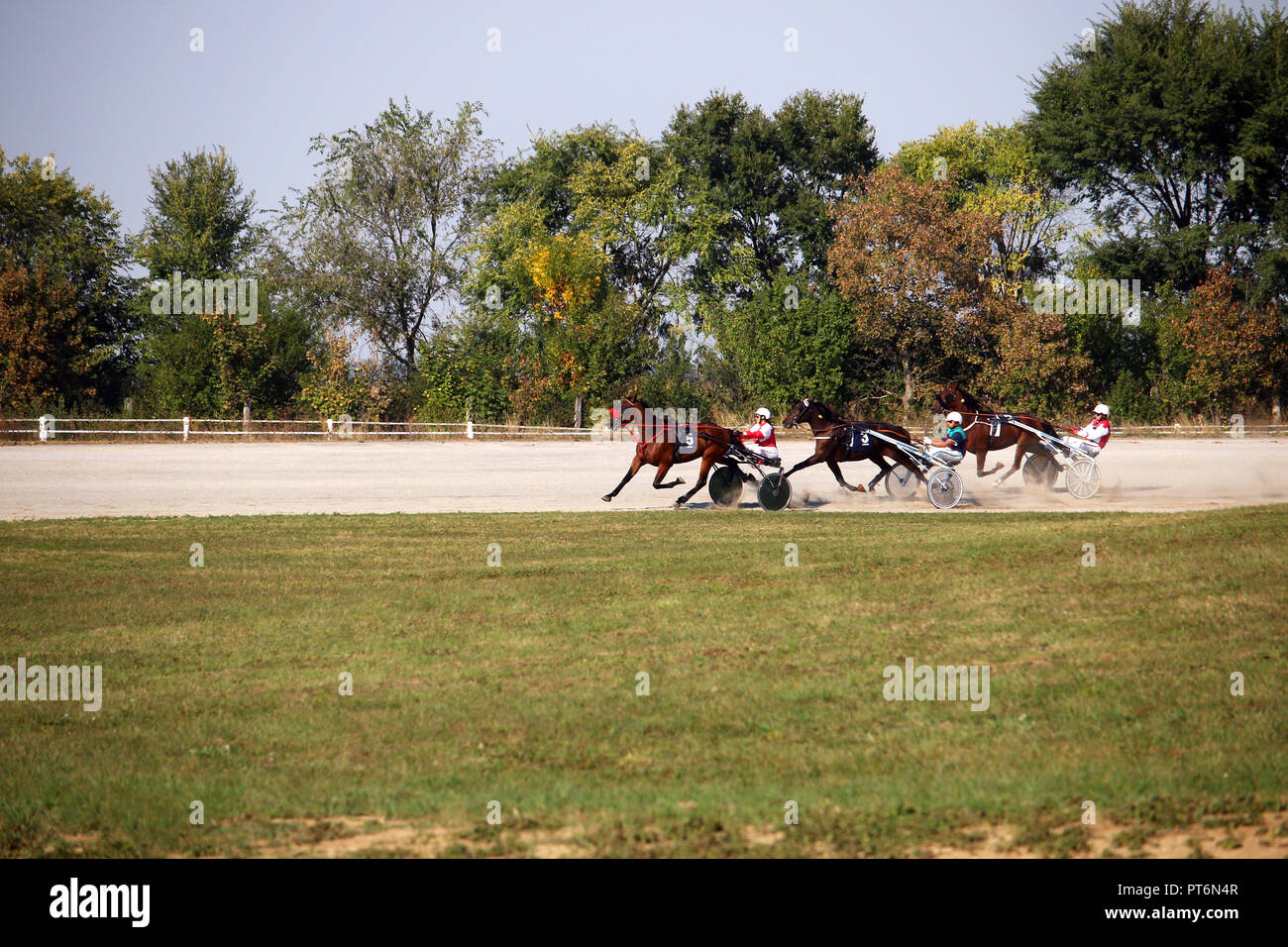 Trotting Race Harness Racing Track Stock Photos Amp Trotting