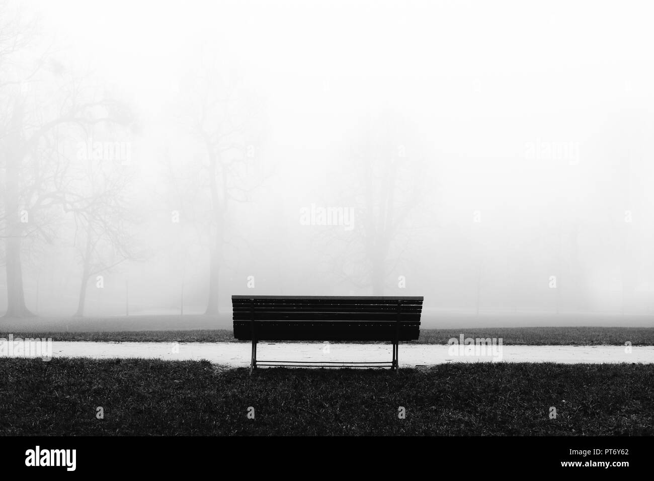 Bench in the cemetery. Solitude and tranquility - Stock Image