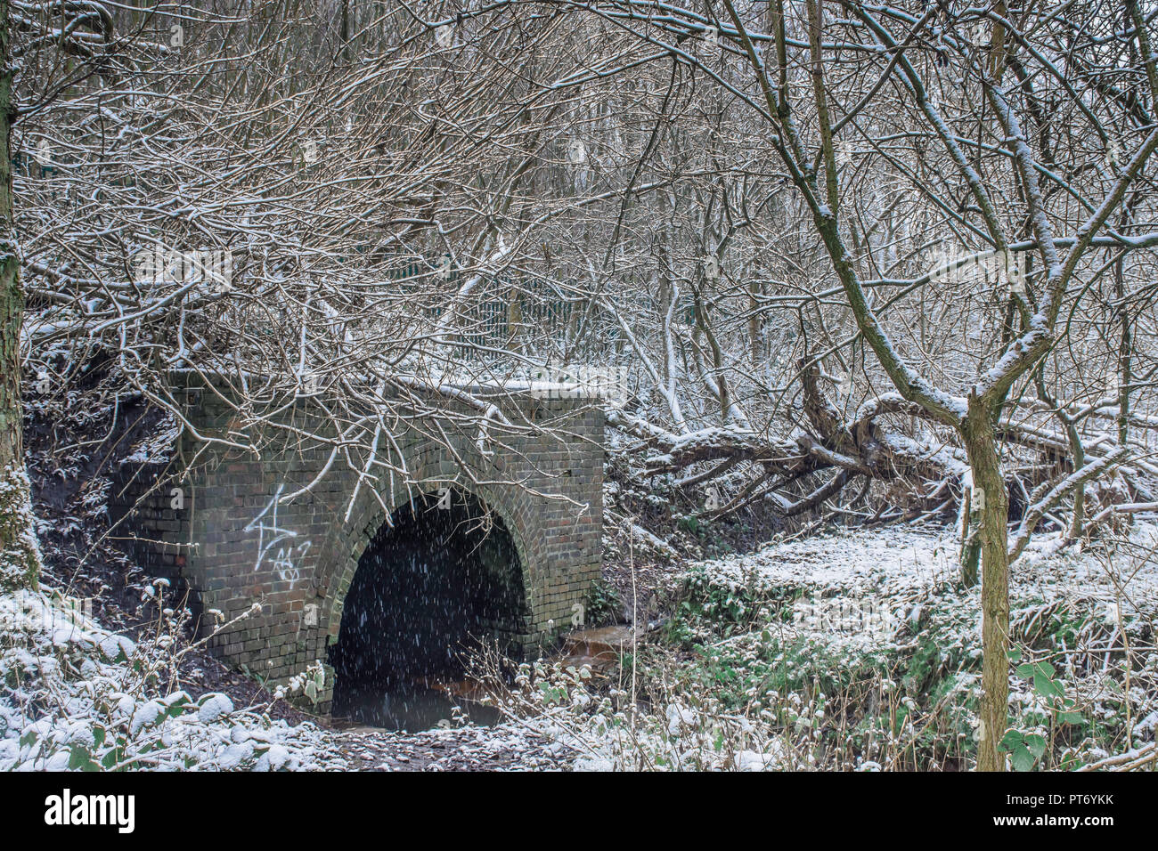 Bridge over stream in woodland covered with snow.Winter wonderland landscape.Nature uk.British forest on snowy winter day.Snowfall in forest. - Stock Image