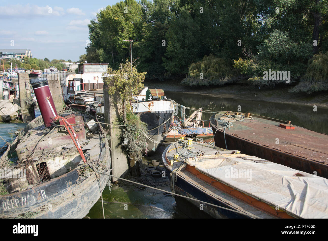 Abandoned and derelict houseboats on the river Thames at Watermans Park, near Kew Bridge, Brentford, London, UK - Stock Image