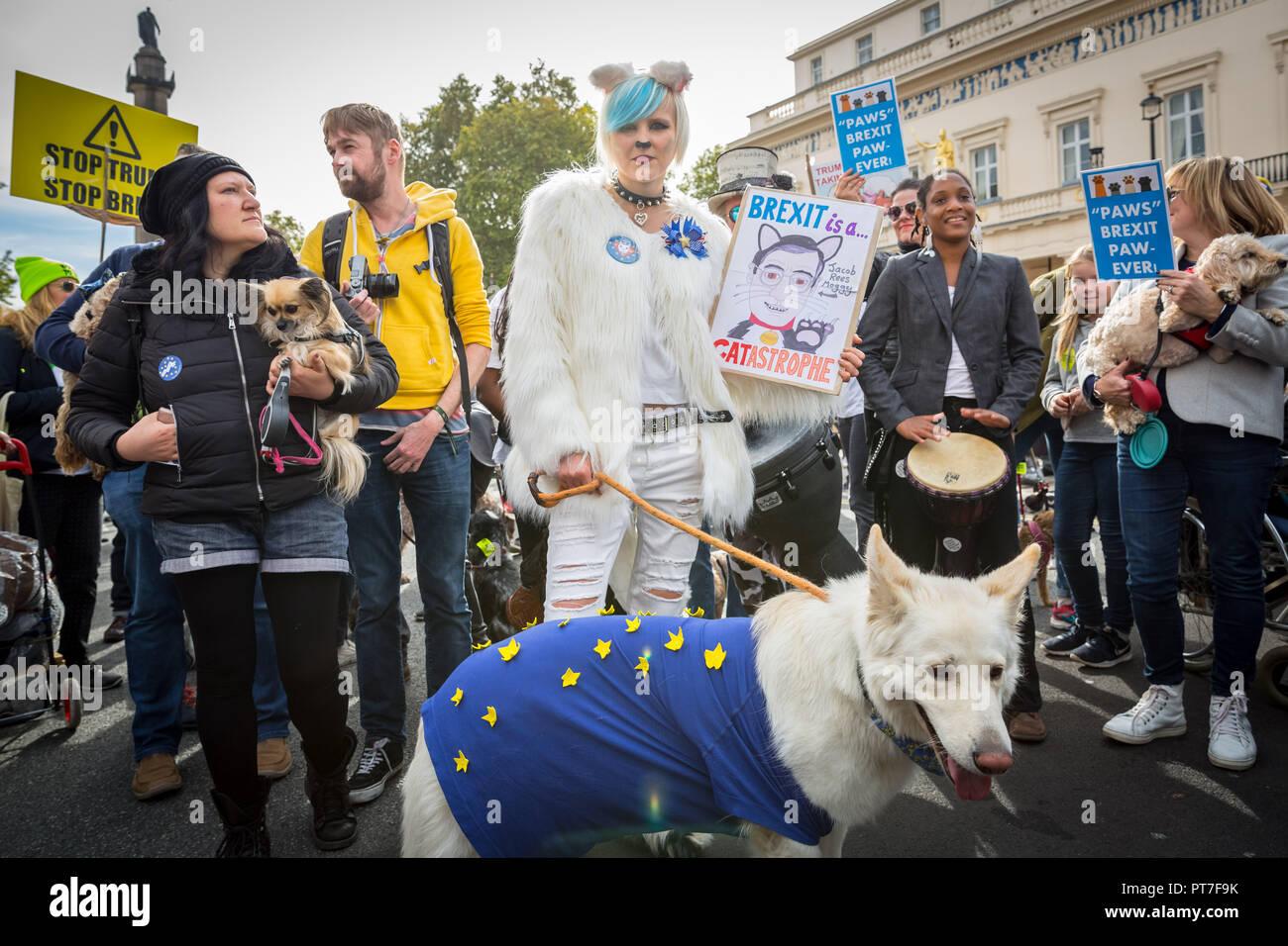 "London, UK. 7th October 2018. Pro-EU 'Wooferendum"" dog march. Credit: Guy Corbishley/Alamy Live News - Stock Image"