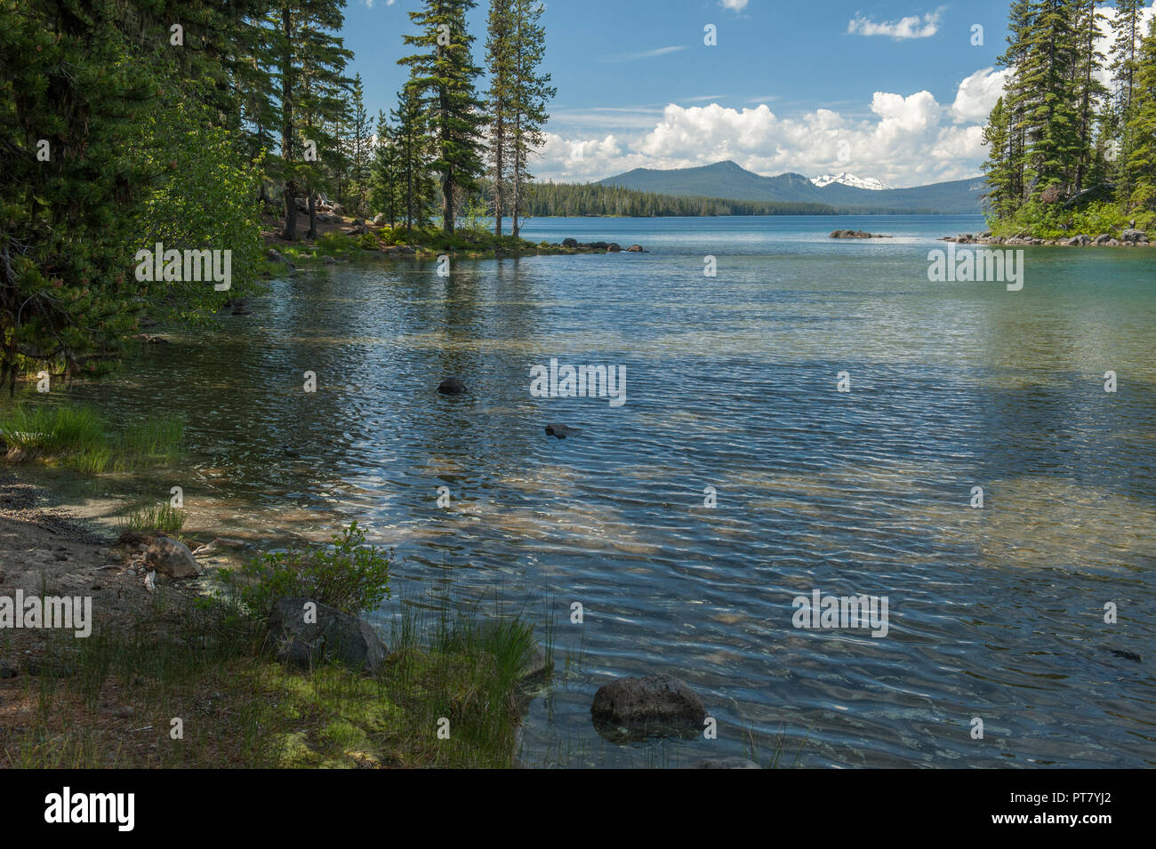 Oregon's Waldo Lake, one of the purest in the world.  Diamond Peak is in the distance. Stock Photo