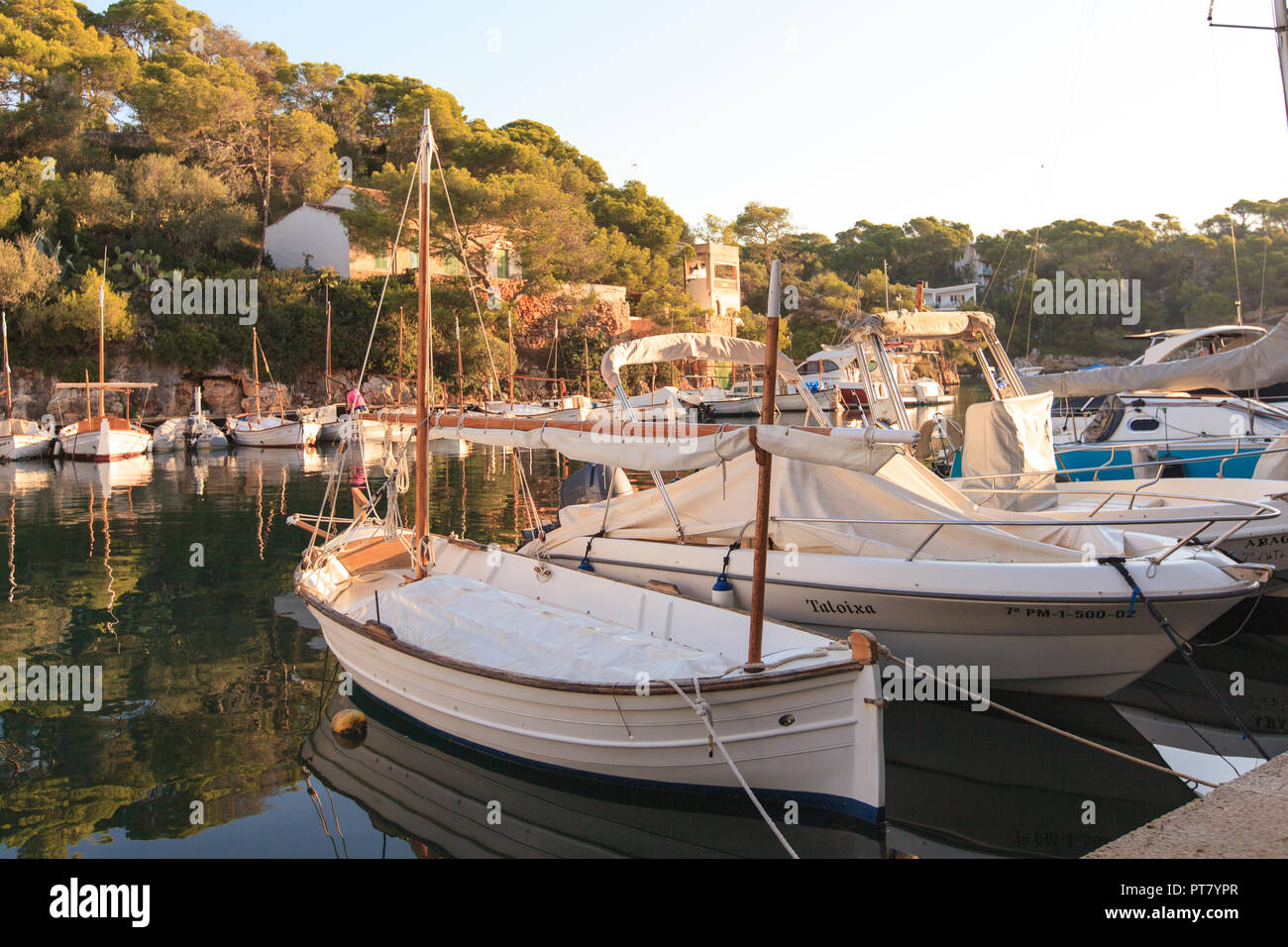 Early in the morning in the port of Cala Figuera, Santanyi, Europe, Spain, Mallorca, Cala Figuera, Santanyi, Balearic Islands, Spain, Mediterranean Se - Stock Image