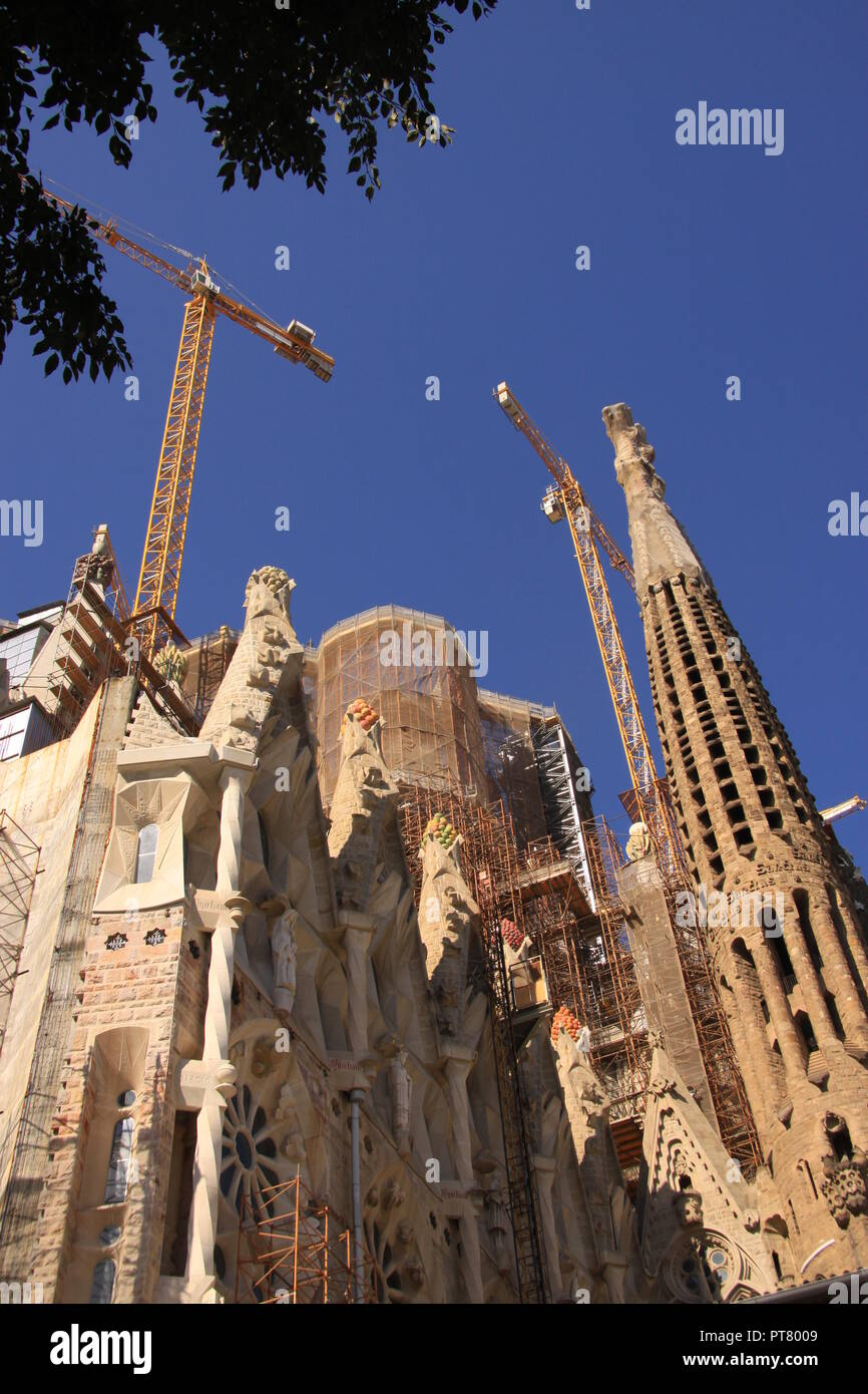 Cranes Towering Over The Unfinished Church Of Sagrada Familia In The