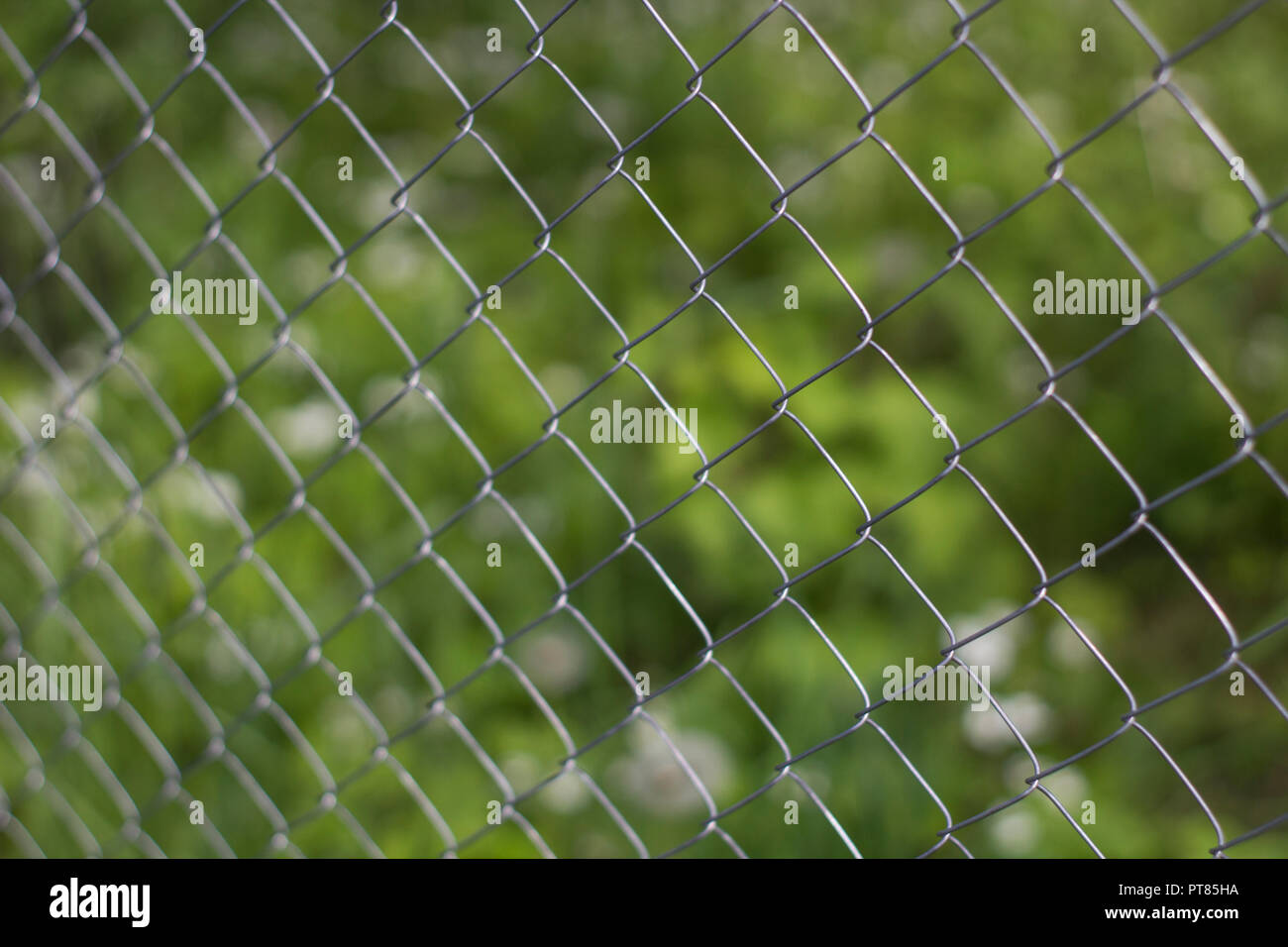 Rabitz Grid Close up on Green Background of Garden. - Stock Image