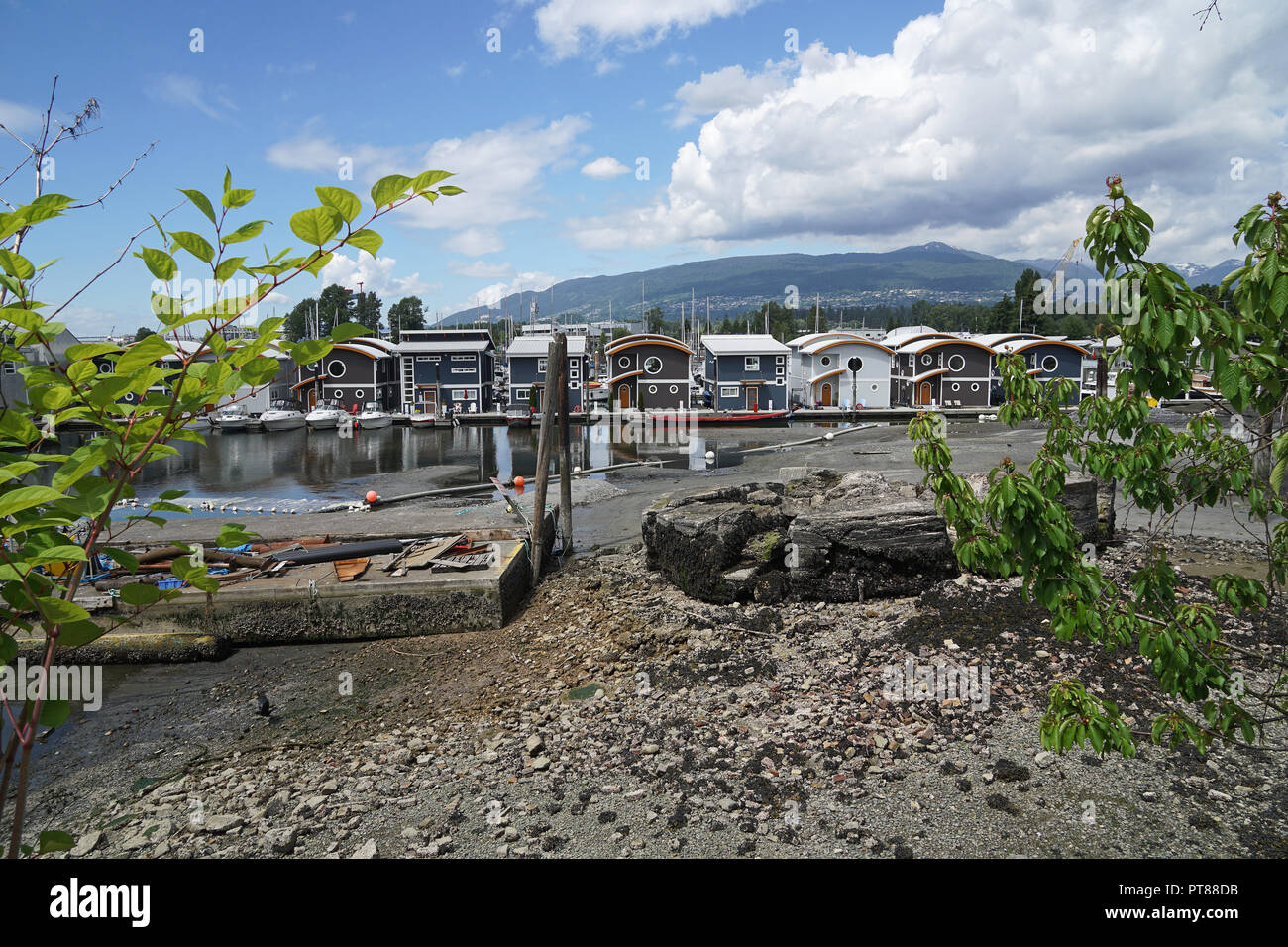 Mosquito Creek Marina floating homes, Vancouver, Canada - Stock Image