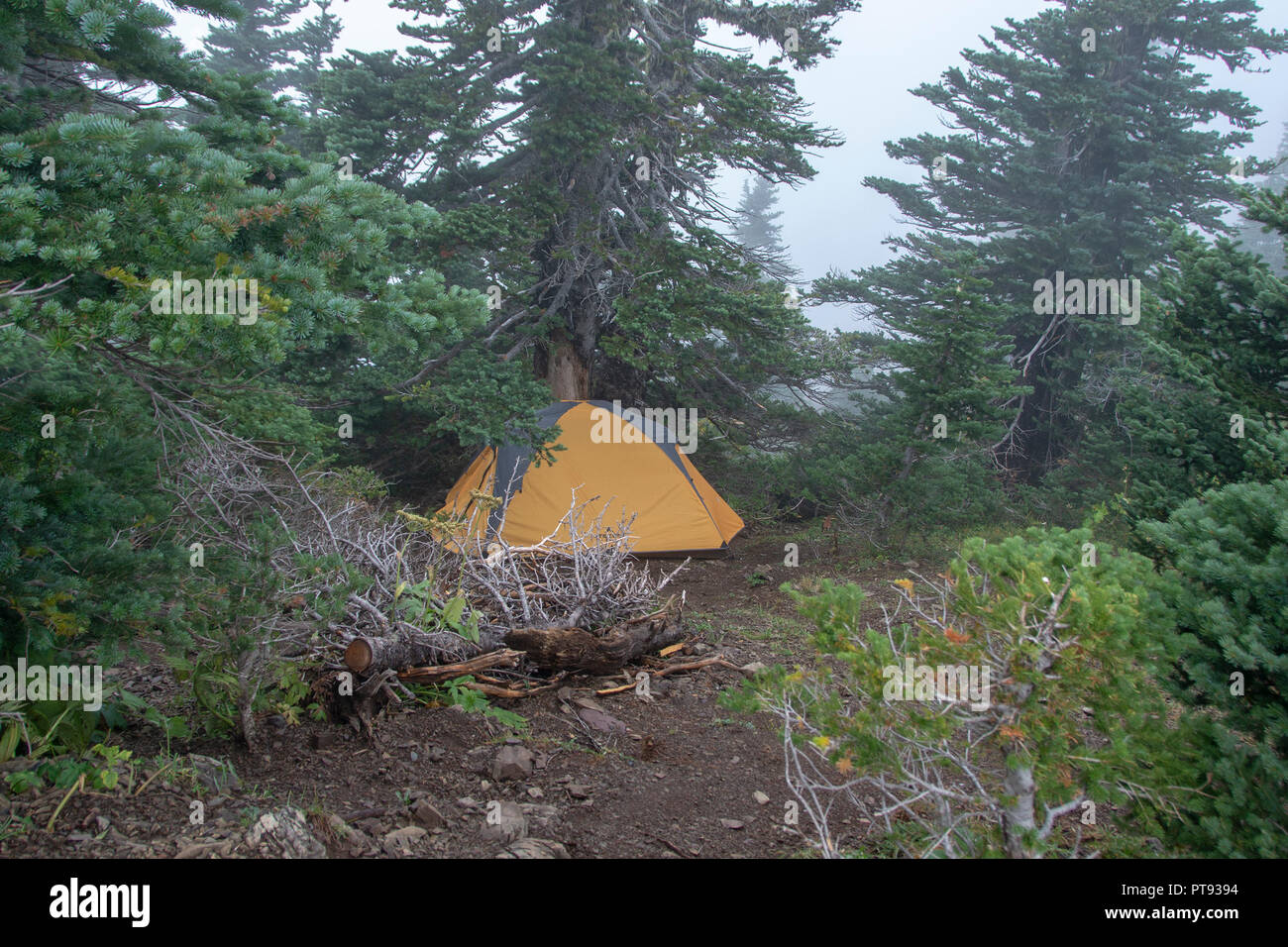Hunters tent on trail & Hunters tent on trail Stock Photo: 221476336 - Alamy