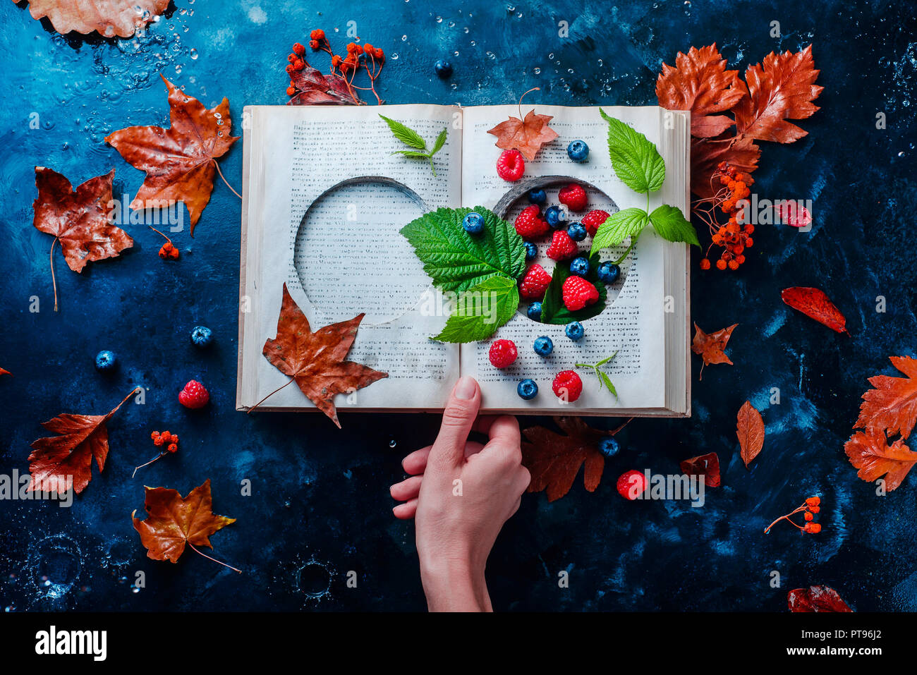 Secret storage book with last summer berries under an autumn rain. Preserving fleeting joys concept with copy space - Stock Image