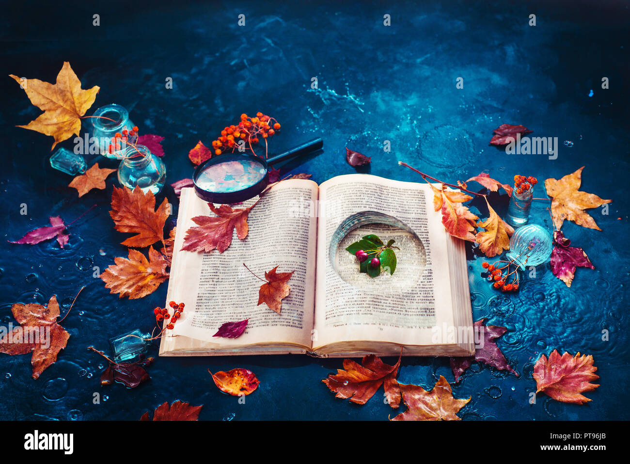 Secret storage book with last summer green leaves in autumn rain. Preserving fleeting joys concept with copy space - Stock Image