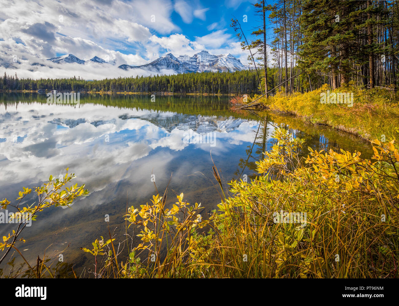 Herbert Lake in Banff National Park in Alberta, Canada. Banff National Park is Canada's oldest national park and was established in 1885. Located in t - Stock Image