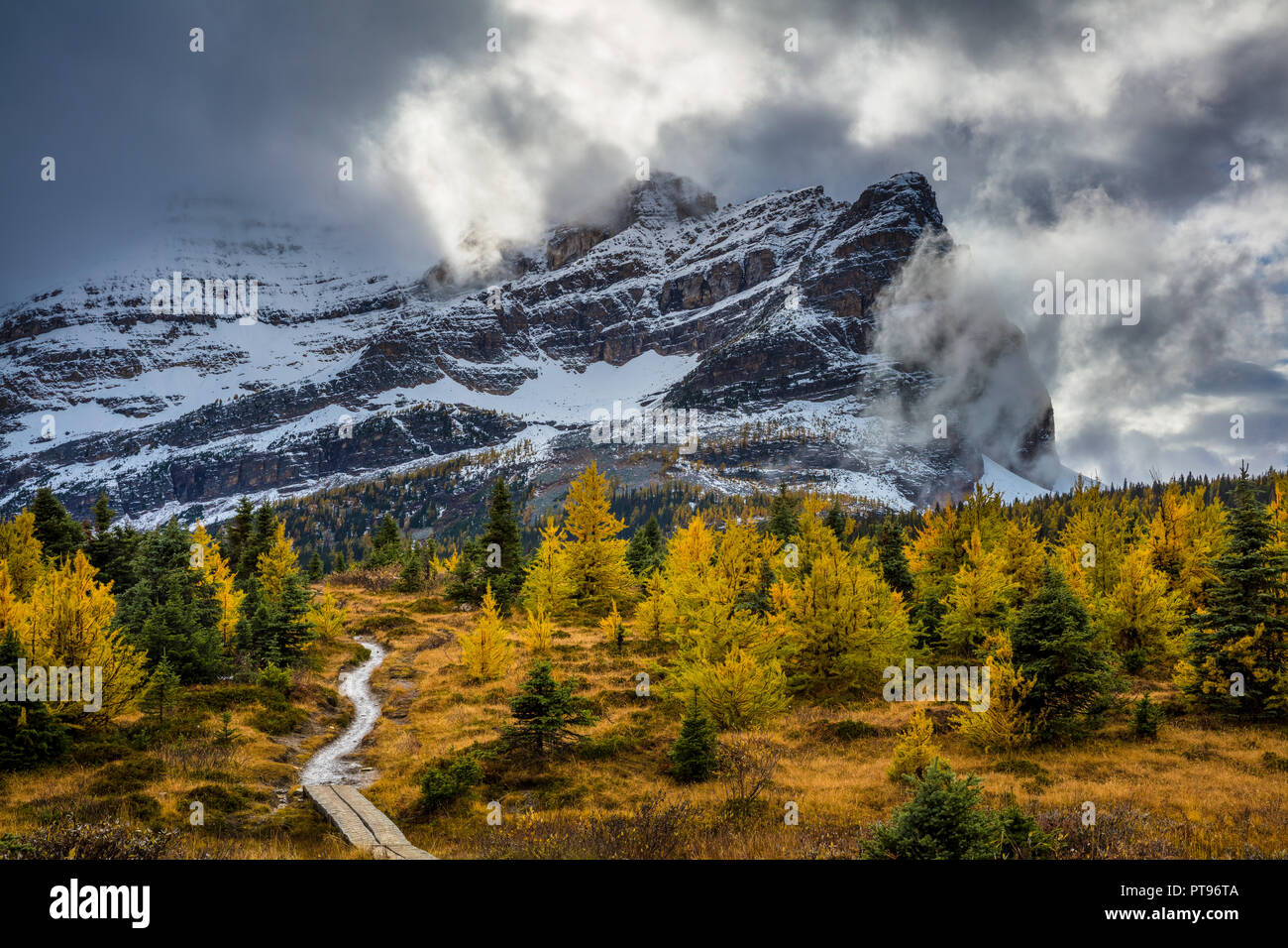Mount Assiniboine Provincial Park is a provincial park in British Columbia, Canada, located around Mount Assiniboine. - Stock Image