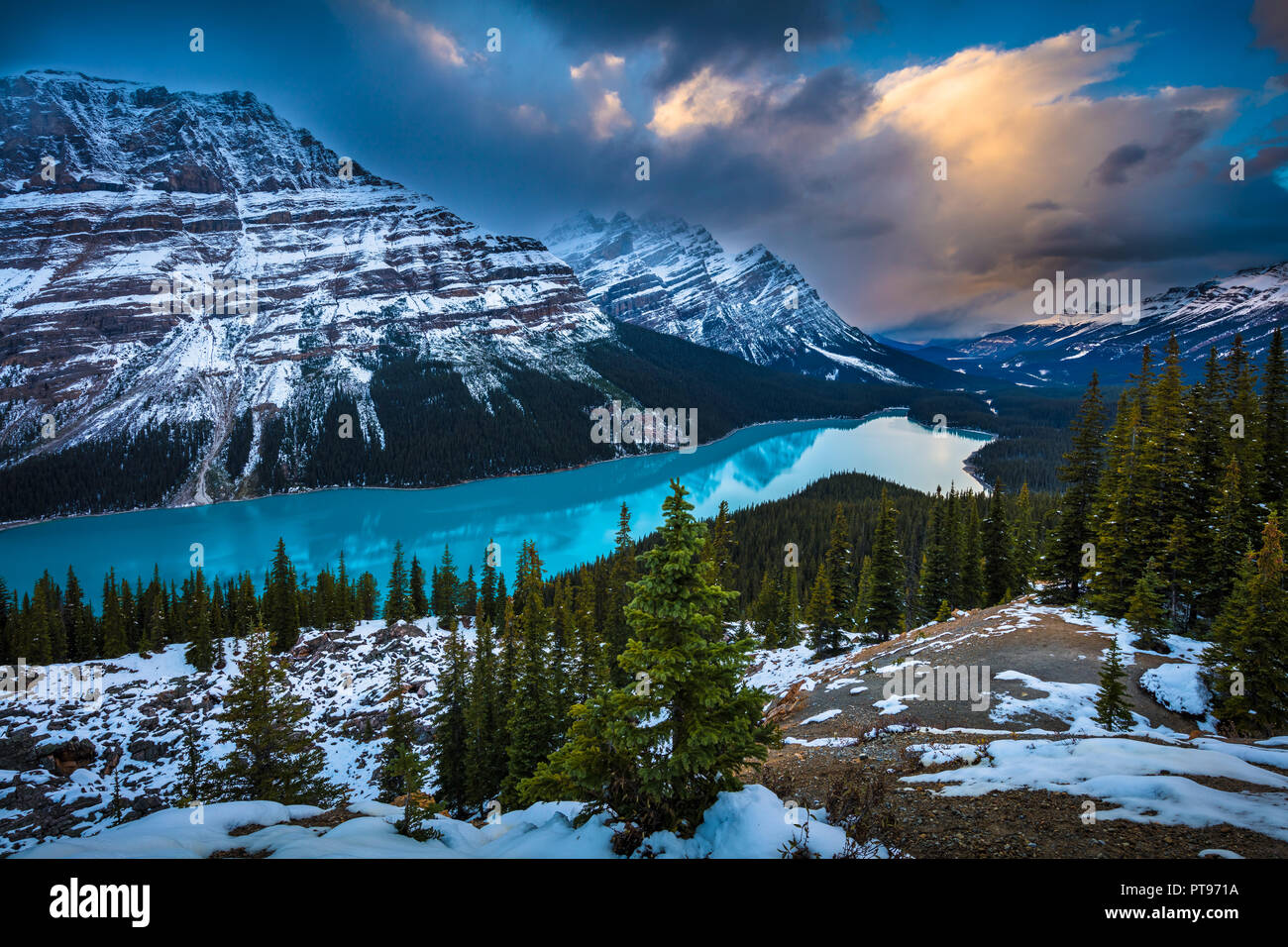 Peyto Lake is a glacier-fed lake in Banff National Park in the Canadian Rockies. The lake itself is easily accessed from the Icefields Parkway. - Stock Image