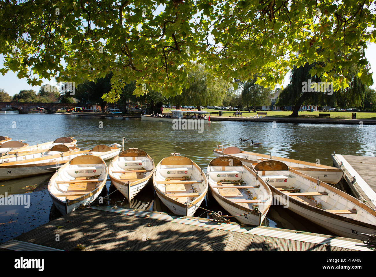 Rowing boats moored on the River Avon outside the Shakespeare Theatre. The boats are named after Shakespeare characters. - Stock Image