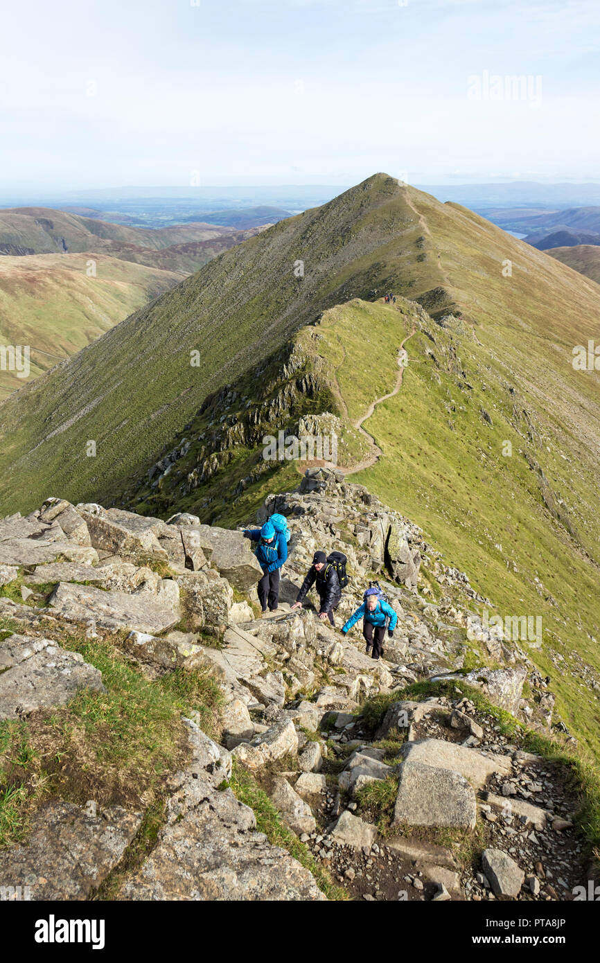 Walkers Scrambling on Swirral Edge with Catstye Cam Behind, Lake District, Cumbria, UK - Stock Image
