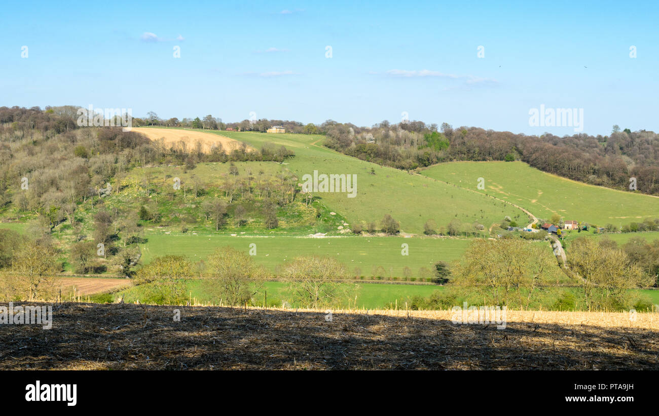 Fields of pasture and farm buildings mix with woodland trees on the slopes of the rolling hills of the Chilterns in England's Home Counties. - Stock Image