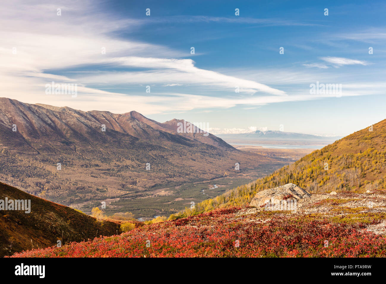Peak autumn colors at Ram Valley in Chugach State Park in Southcentral Alaska. - Stock Image