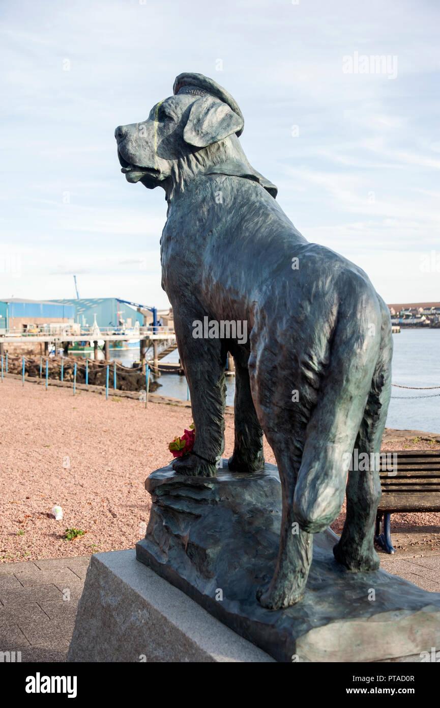 Statue of BAMSE, an heroic Norwegian World War Two sea dog. - Stock Image