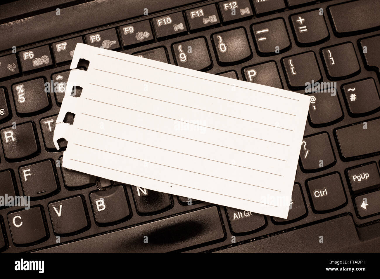 sheet lined note paper torn stock photos sheet lined note paper