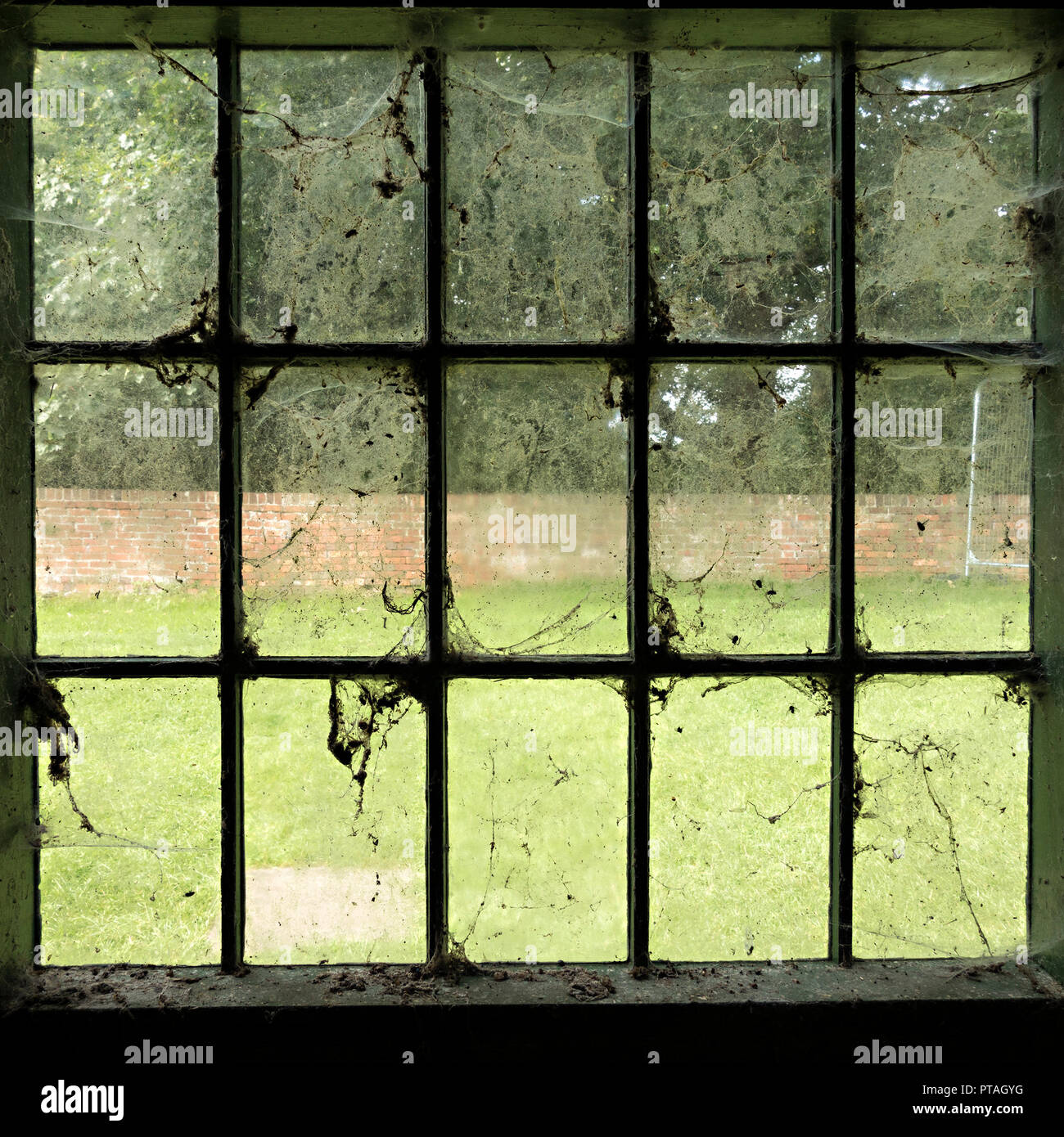 Dirty windows - old, dirty, glass window panes covered in cobwebs, spider webs, dust and dirt. - Stock Image