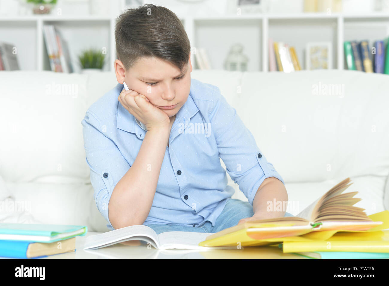 portrait of a boy doing homework at home stock photo 221514642 alamy rh alamy com Homework Help at Home Family Doing Homework