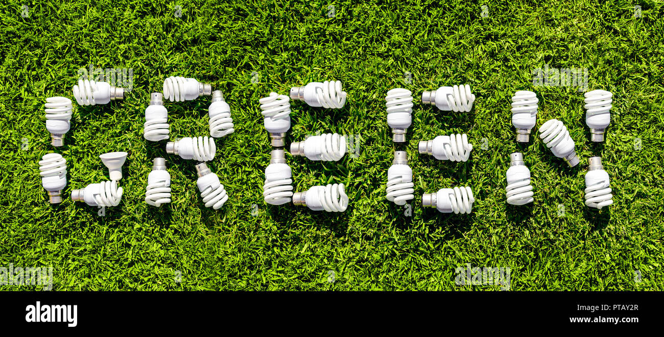 Energy efficient light bulbs on grass. Green source of energy concept - Stock Image