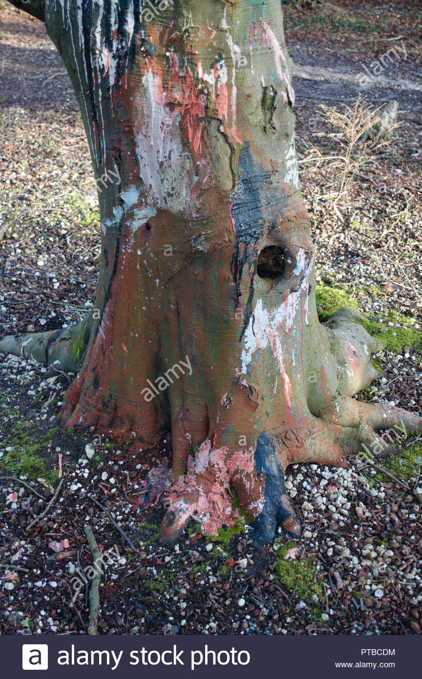 Paint thrown over a tree in a forest - Stock Image