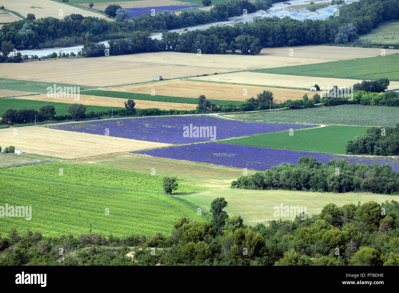 High-Angle or Aerial View of Wheat and Lavender Field Patterns in the Asse Valley Shot from the Valensole Plateau Provence France - Stock Image