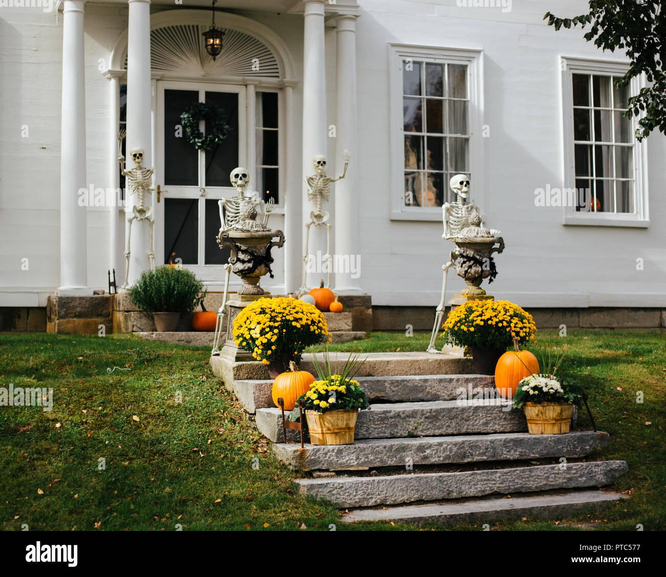 Halloween Yard Decorations Ideas High Resolution Stock