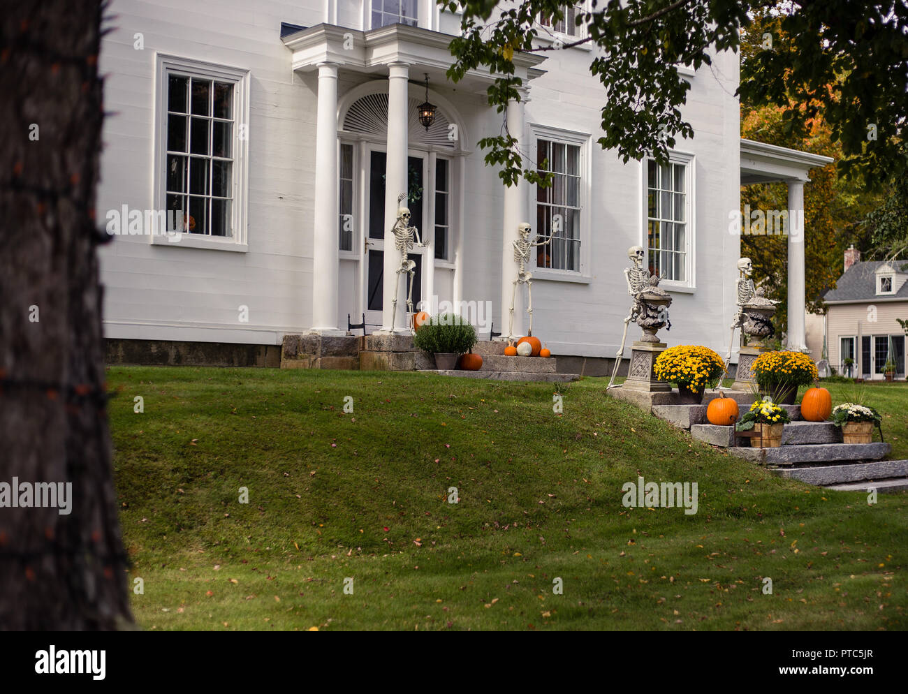 best halloween yard decorations stock photos & best halloween yard