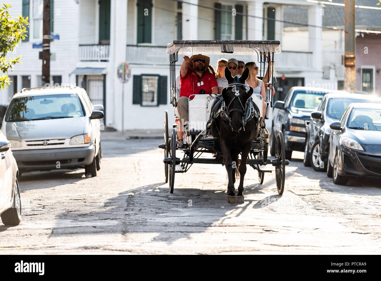 New Orleans, USA - April 22, 2018: Street in downtown historic city in Louisiana with horse and carriage buggy tour guide during sunset - Stock Image