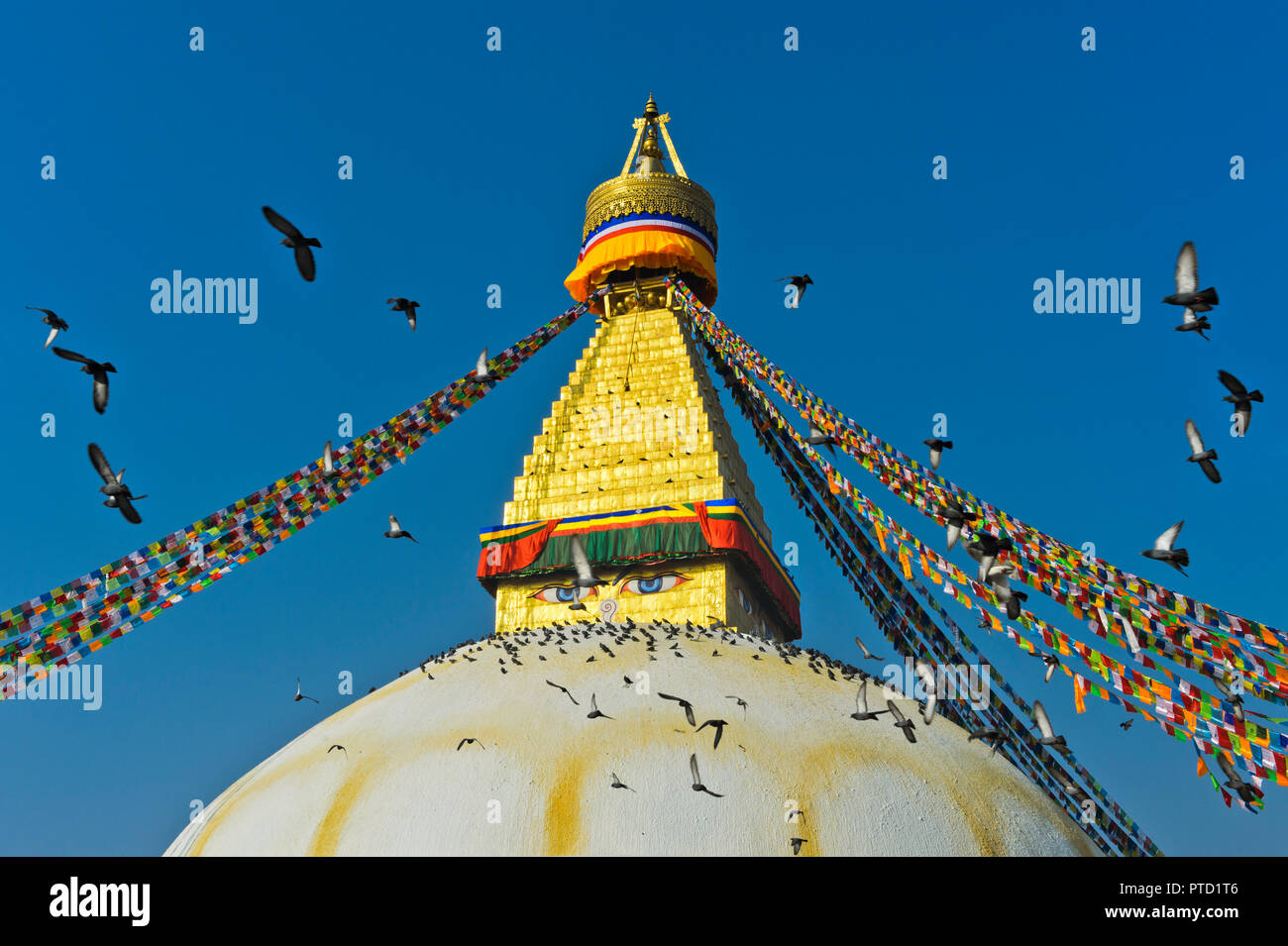 Boudhanath Stupa with a flock of pigeons flying in the sky, Kathmandu, Nepal - Stock Image
