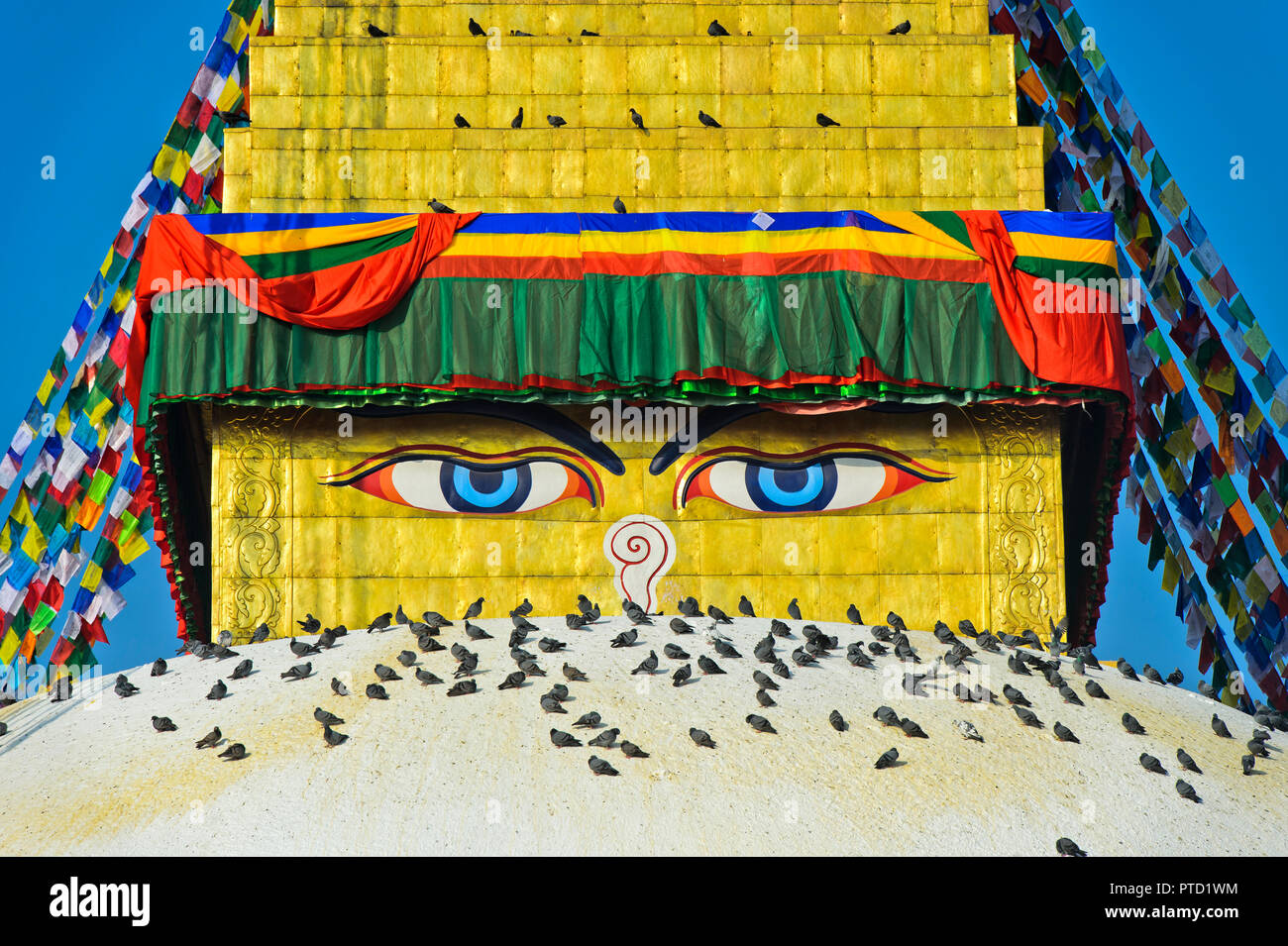 Buddha's eyes at Boudhanath Stupa, with birds, Kathmandu, Nepal - Stock Image