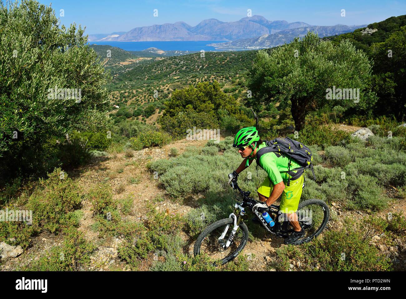 Mountain biker drives through Macchia, near Kritsa, Agios Nikolaos, Crete, Greece - Stock Image