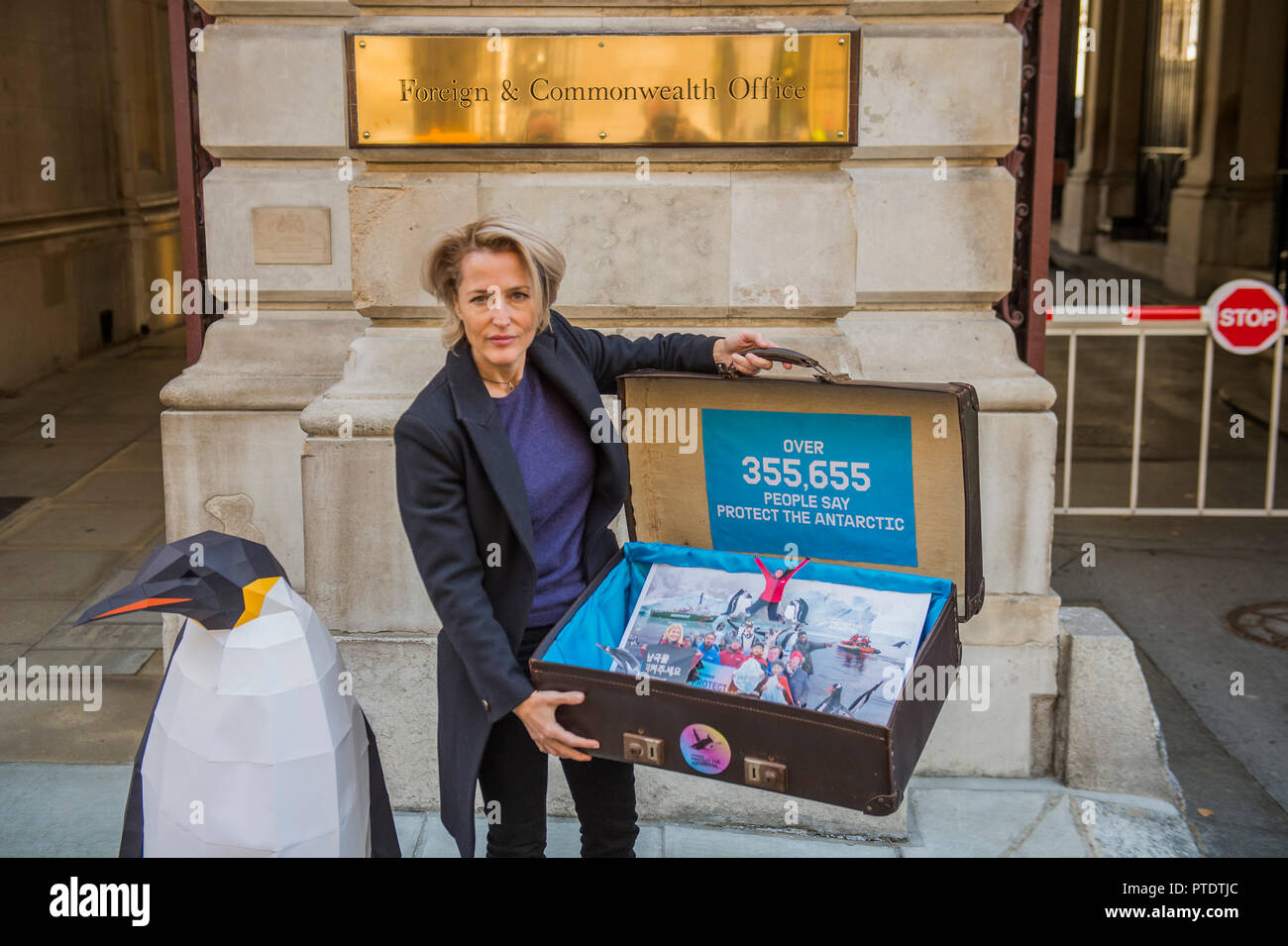 London, UK. 9th October, 2018. Gillian Anderson (pictured) arrives with the 350k signature petition in a well-travelled suitcase - as a Greenpeace Antarctic Ambassador she visits the Foreign & Commonwealth Office to deliver a petition calling for the creation of the largest protected area on Earth – a 1.8 million square kilometre Antarctic Ocean Sanctuary. Credit: Guy Bell/Alamy Live News Stock Photo