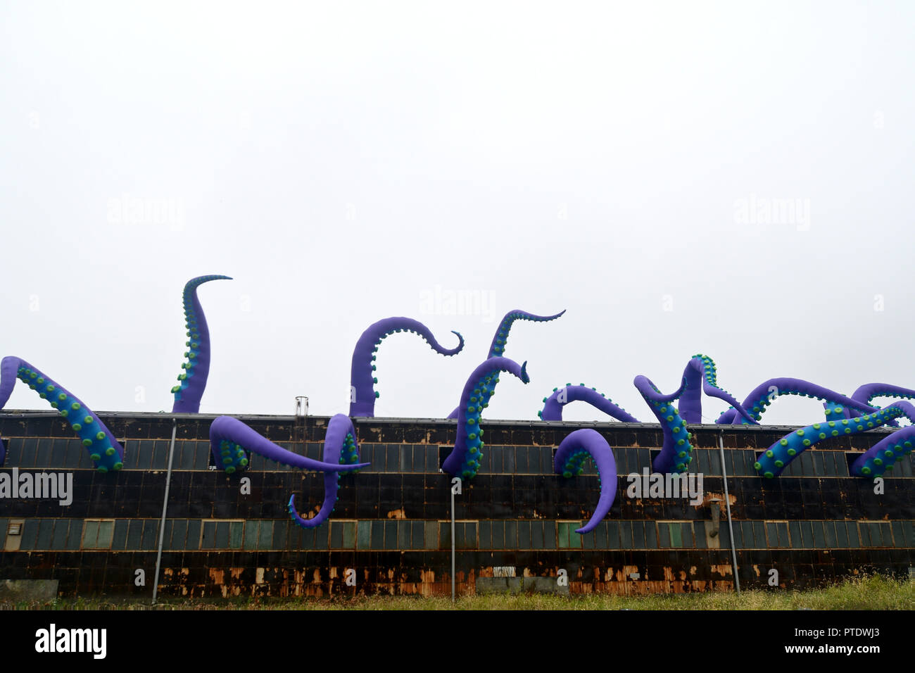 Philadelphia, USA. 8th Oct 2018. Inflatable tentacles of a temporary art installation, titled Navy Yard Sea Monster, by British artist Pedro Estrellas and Filthy Luker emerge from an old warehouse in Philadelphia, Pennsylvania, on October 8, 2018. The art work is commissioned by Philadelphia Industrial Development Corporation to promote the redevelopment of Philadelphia Navy Yard. Credit: PhotograPHL/Alamy Live News - Stock Image