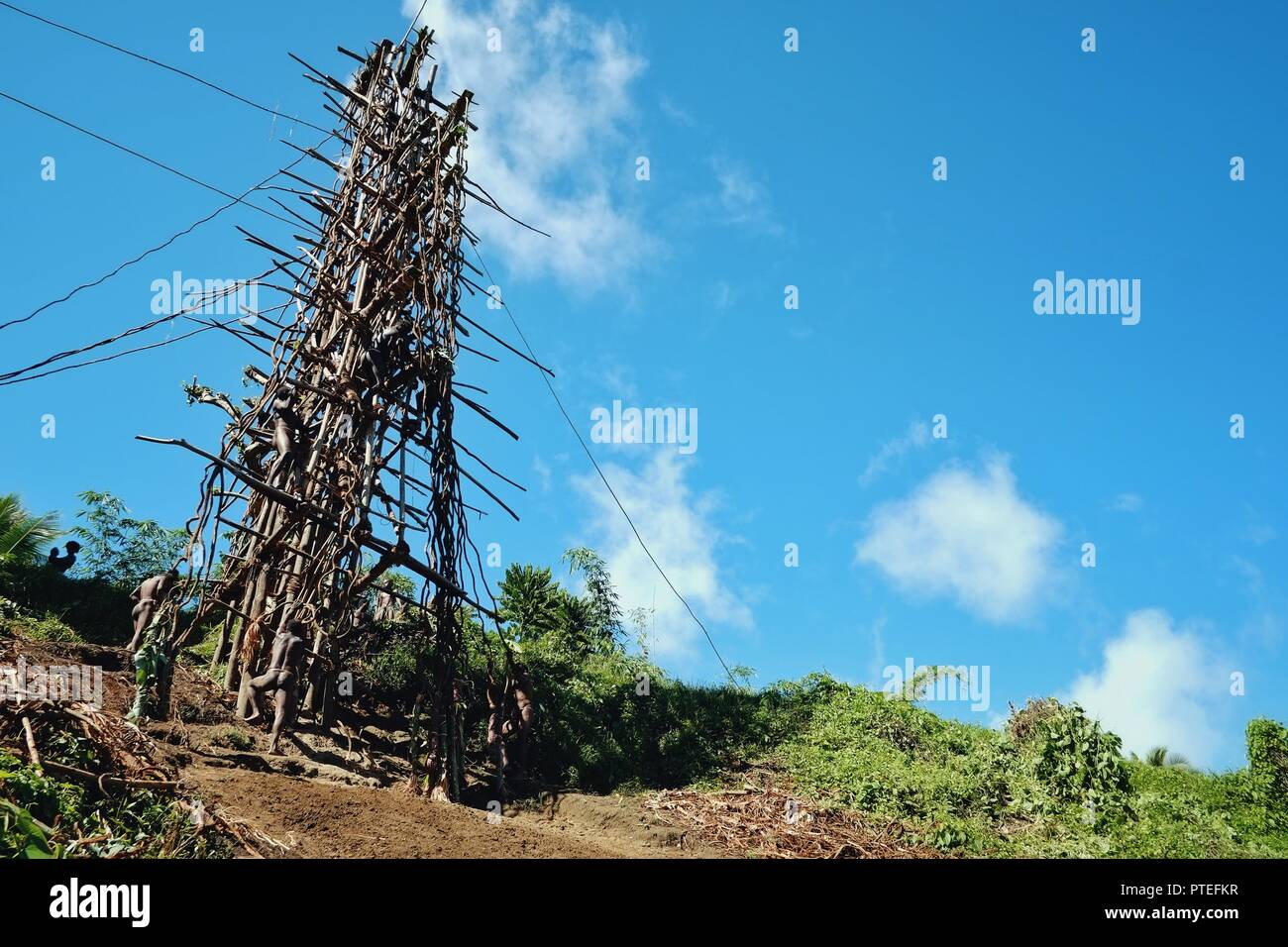 Panngi, Pentecost Island / Vanuatu - MAY 10 2016: Land diving ceremony held by the celebration of yam harvest around the south west shore - Stock Image