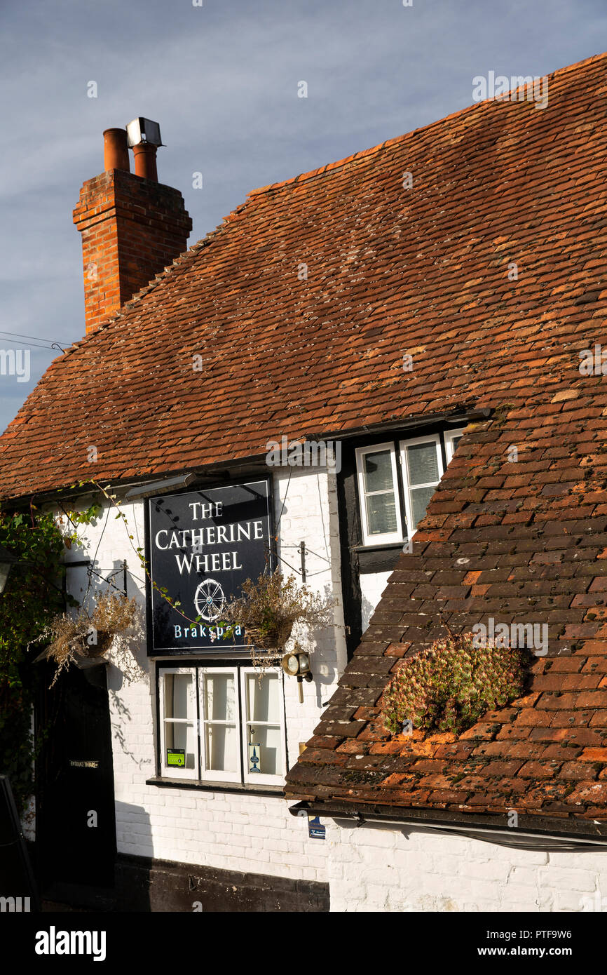 England, Berkshire, Goring on Thames, Station Road, succulent plant growing on uneven clay tiled roof of Catherine Wheel pub - Stock Image