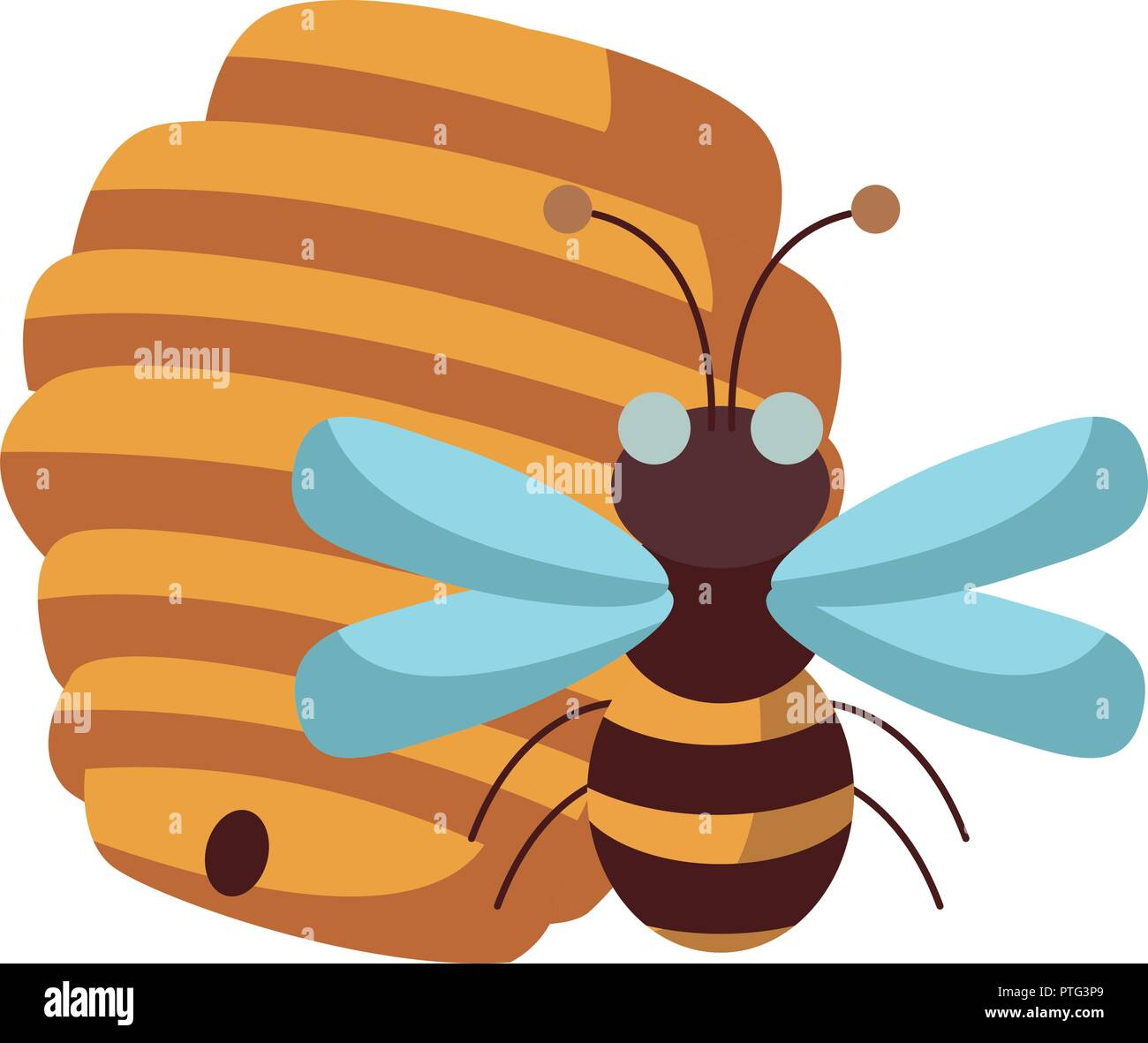 Honeycomb and bee - Stock Image