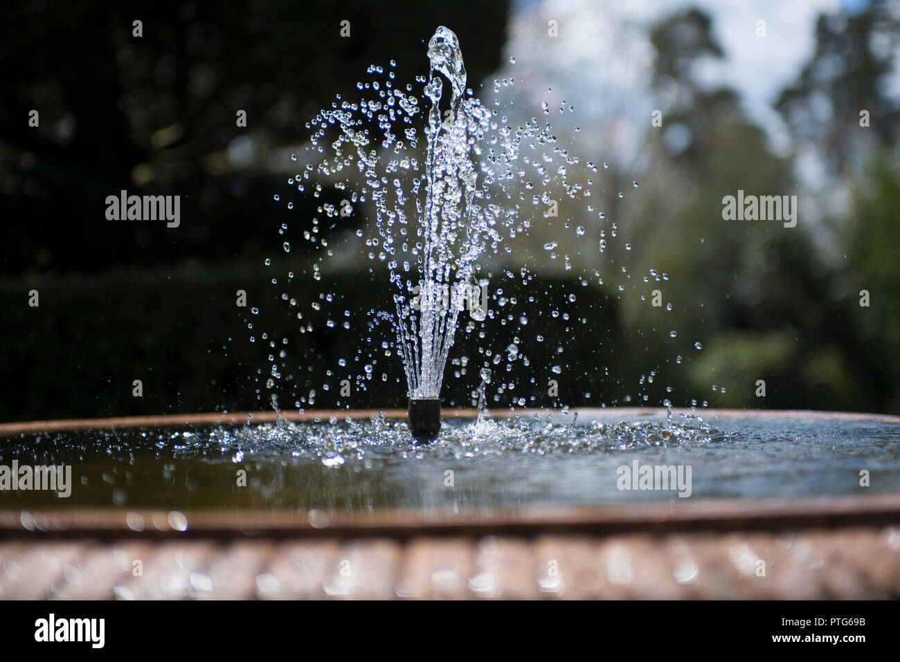 Stately home garden fountain at Nymans, Sussex Stock Photo