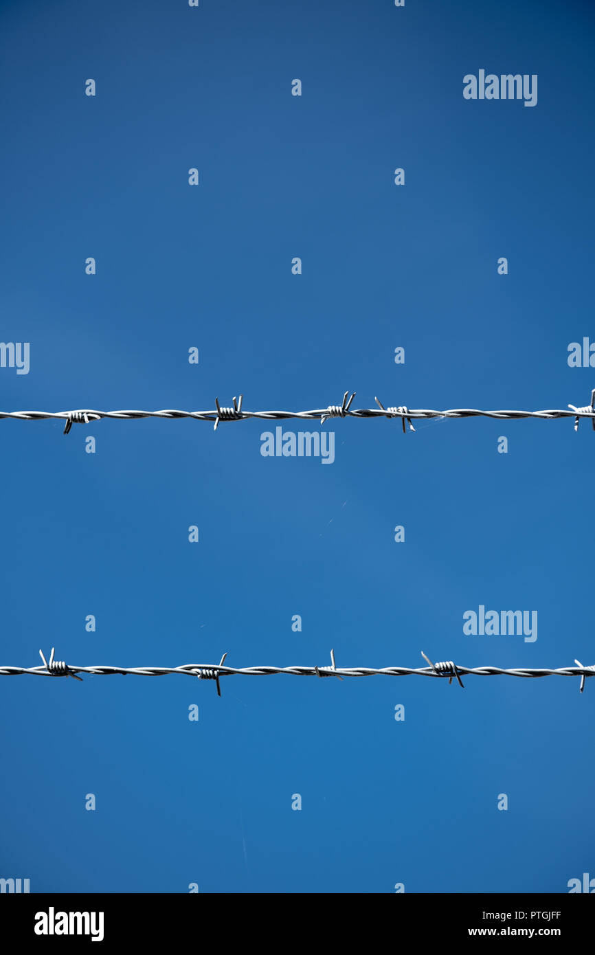 Two rows of Barbed Wire in front of blue sky. - Stock Image